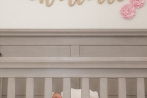 newborn baby girl in crib lifestyle newborn session