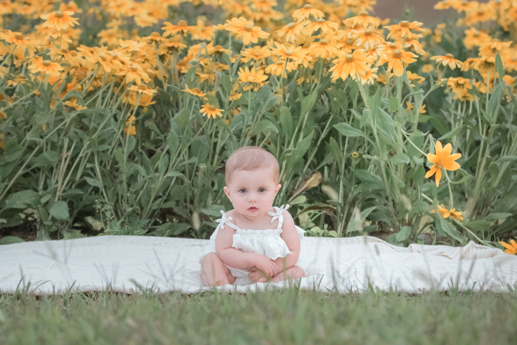 sitter milestone session in simmons farm flower field