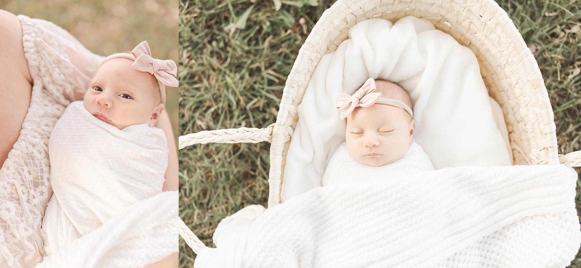 Venetia PA newborn photographer