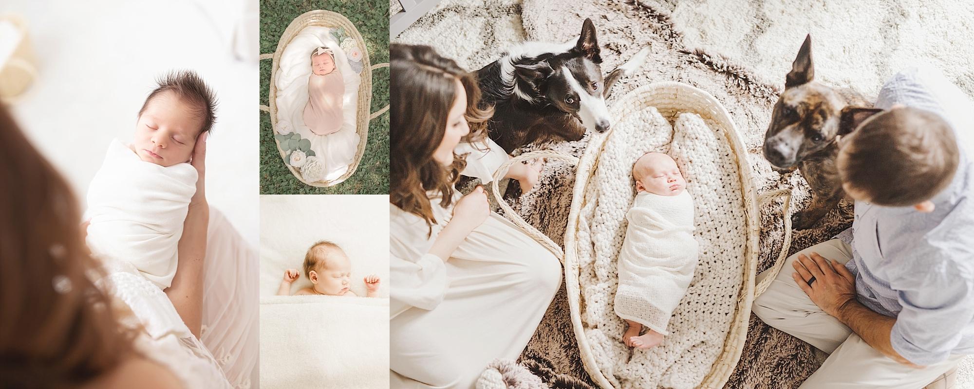 Venetia Newborn Photographer